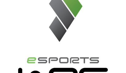 eSports-WRC-Main-logo-vertical-exclusion-zone