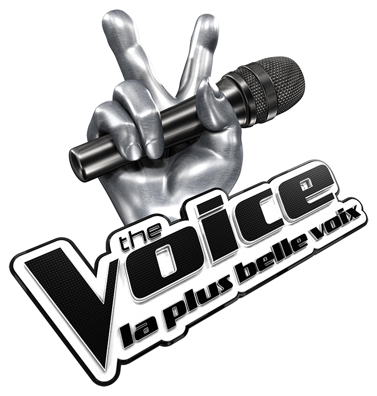 The Voice : La plus belle voix – Visuel