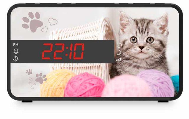 Radio réveil double alarme (animaux) – Visuel
