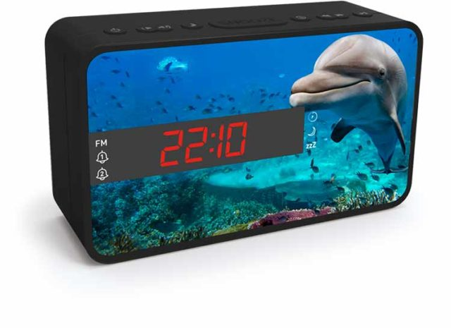 Radio réveil double alarme (animaux) – Visuel#2tutu