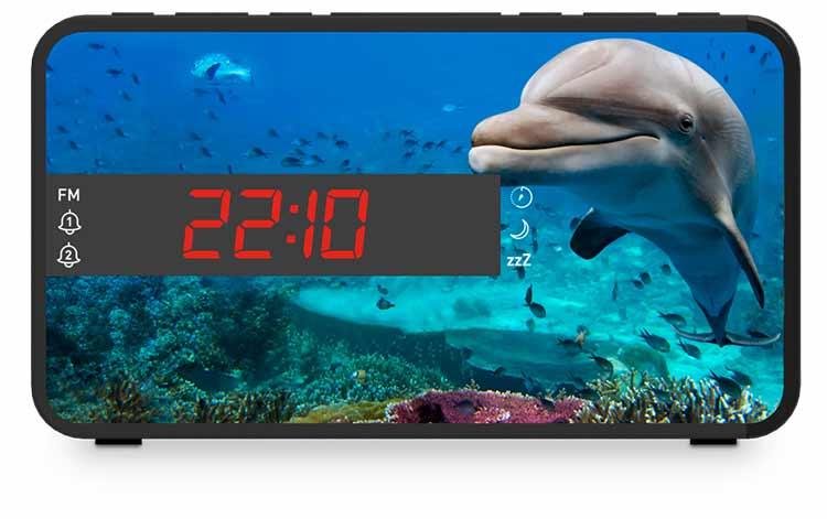 Radio despertador Bigben diseño animales - Imagen#2tutu